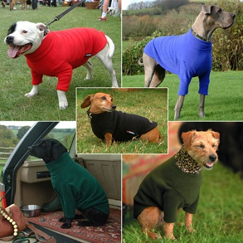 Best Dog Fleece Ever Iconic Gifts